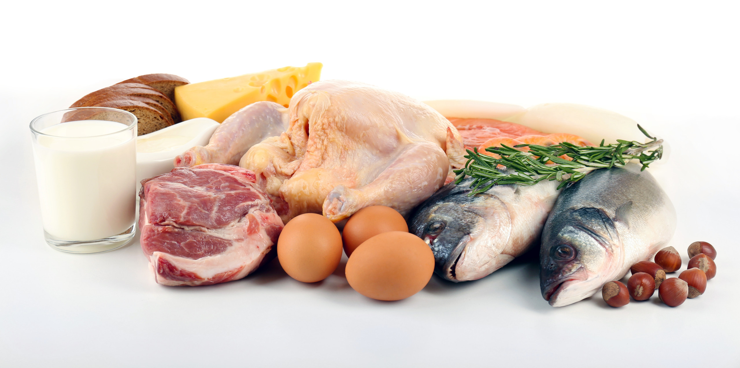 bigstock-Food-high-in-protein-isolated-76403156-e1448554614634